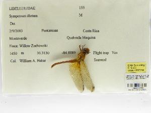 ( - INB0004315897)  @11 [ ] Copyright (2012) B. Haber Instituto Nacional de Biodiversidad