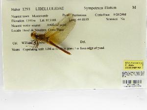 ( - INB0004315956)  @11 [ ] Copyright (2012) B. Haber Instituto Nacional de Biodiversidad