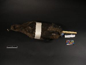 ( - 2007-1078)  @12 [ ] Copyright (2013) Takema  Saitoh Yamashina Institute for Ornithology
