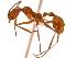 (Aphaenogaster MAS001 - 08COSTA-0440)  @15 [ ] Unspecified (default): All Rights Reserved  Unspecified Unspecified