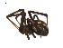 ( - BIOUG12605-E09)  @13 [ ] CreativeCommons – Attribution Non-Commercial Share-Alike (2014) G. Blagoev Biodiversity Institute of Ontario