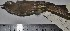 (Elaenia pallatangae - MHNSM MUSM-Orn-12856)  @11 [ ] Copyright (2014) Unspecified Museo de Historia Natural