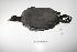"(Fulica ardesiaca - MACN-Or-ct 1206)  @13 [ ] Copyright (2012) MACN Museo Argentino de Ciencias Naturales ""Bernardino Rivadavia"""