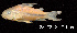 ( - LBPV 28178)  @11 [ ] CreativeCommons - Attribution (2013) Claudio de Oliveira Laboratório de Biologia e Genética de Peixes - UNESP - Botucatu