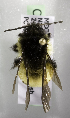 (Bombus ephippiatus - CCDB-09842 H09)  @14 [ ] CreativeCommons - Attribution Non-Commercial Share-Alike (2010) Packer Collection York University York University