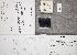 (Inocybe ambigua - TUR175945)  @11 [ ] CreativeCommons - Attribution Non-Commercial (2012) Anna L. Ruotsalainen University of Oulu