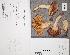 (Russula vinosopurpurea - TUR176373)  @11 [ ] CreativeCommons - Attribution Non-Commercial (2012) Anna L. Ruotsalainen University of Oulu