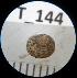 (Gibbula cicer - HVDBM_T_145)  @13 [ ] Unspecified (default): All Rights Reserved  Unspecified Unspecified