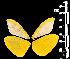 (Enantia ssp3MEX - MAL-05538)  @12 [ ] Copyright (2012) Unspecified Museo de Zoologia, Facultad de Ciencias, UNAM