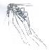 (Aedes metallicus - 14702-AemetF04)  @13 [ ] Copyright (2012) Yvonne U Ajamma icipe