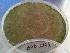 (Aspergillus fumigatus - BAB 2162)  @11 [ ] Copyrights (2014) Gujarat Biodiversity Gene Bank, GSBTM, DST, GoG Gujarat Biodiversity Gene Bank, GSBTM, DST, GoG