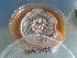 (Aspergillus flavus - BAB 3488)  @11 [ ] Copyrights (2014) Gujarat Biodiversity Gene Bank, GSBTM, DST, GoG Gujarat Biodiversity Gene Bank, GSBTM, DST, GoG