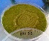(Aspergillus variecolor - BAB 55)  @11 [ ] Copyright (2014) Gujarat Biodiversity Gene Bank, GSBTM, DST, GoG Gujarat Biodiversity Gene Bank, GSBTM, DST, GoG