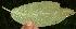 (Kohleria - BioBot10969)  @11 [ ] CreativeCommons - Attribution Non-Commercial Share-Alike (2010) Daniel H. Janzen Guanacaste Dry Forest Conservation Fund