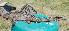 (Hypostomus paranensis - CREG ECOMOL AR11-1296)  @14 [ ] Copyright (2012) UNLP Universidad Nacional de La Plata