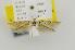 (Coleophora prepostera - CNCLEP00056142)  @14 [ ] Copyright (2011) Jean-Francois Landry Canadian National Collection