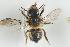 ( - NOAPI472)  @11 [ ] CC-NC-SA (2014) Arnstein Staverlokk Norwegian Institute of Nature Research