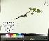 ( - TJD-076)  @11 [ ] by-nc (2014) MTMG McGill University Herbarium